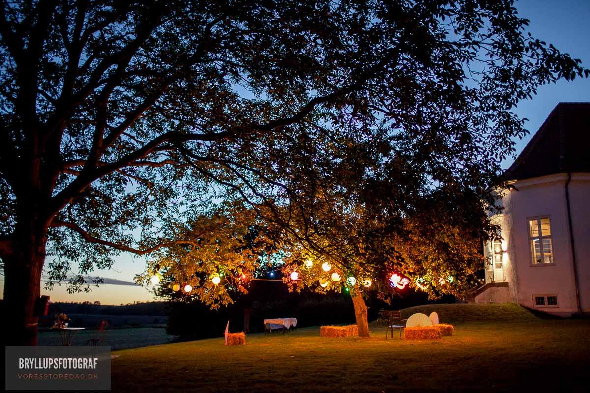 Festfotograf til din Fest, Bryllup